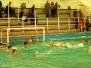 2012-04-21 [R] SC Quinto - Lavagna 90 B 17-5