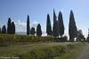 Firenze_U15-60