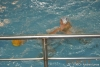 RN Arenzano - SC Quinto-13.jpg