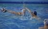 B&B SC Quinto - Chiavari Nuoto-15.jpg