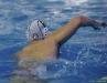 B&B SC Quinto - Chiavari Nuoto-26.jpg