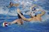 B&B SC Quinto - Chiavari Nuoto-41.jpg