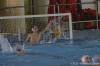 Sc Quinto A - Chiavari Nuoto-1.jpg