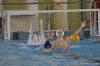 Sc Quinto A - Chiavari Nuoto-11.jpg