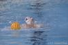 Sc Quinto A - Chiavari Nuoto-13.jpg
