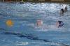 Sc Quinto A - Chiavari Nuoto-18.jpg
