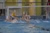 Sc Quinto A - Chiavari Nuoto-22.jpg