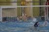 Sc Quinto A - Chiavari Nuoto-23.jpg