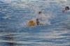 Sc Quinto A - Chiavari Nuoto-29.jpg