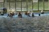 Sc Quinto A - Chiavari Nuoto-34.jpg
