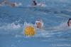 Sc Quinto A - Chiavari Nuoto-4.jpg