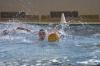 Sc Quinto A - Chiavari Nuoto-7.jpg