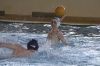 Sc Quinto A - Chiavari Nuoto-8.jpg