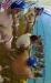 Albaro Nervi - B&B SC Quinto-22.jpg