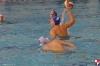Chiavari Nuoto - SC Quinto - 004