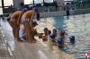 Chiavari Nuoto - SC Quinto - 017