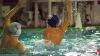 Lerici Sport - SC Quinto B 055