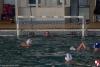 Rapallo Nuoto - Sc Quinto B 022