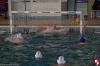 Rapallo Nuoto - Sc Quinto B 024