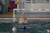 Rapallo Nuoto - Sc Quinto B 028