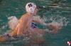 Rapallo Nuoto - Sc Quinto B 039