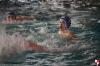 Rapallo Nuoto - Sc Quinto B 065