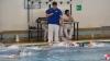 SC Quinto A - Chiavari Nuoto - 062