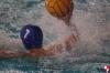 Idea Sport Albenga - SC Quinto B - 100