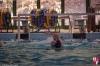 SC Quinto B - Rapallo Nuoto - 120