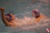 U20 - SC Quinto - Chiavari Nuoto- 049