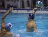Quinto 7 - Sport Management 16 foto Giorgio Scarfi 24