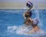 Quinto 7 - Sport Management 16 foto Giorgio Scarfi 46