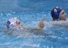 Quinto 7 - Sport Management 16 foto Giorgio Scarfi 54