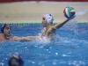 Quinto 7 - Sport Management 16 foto Giorgio Scarfi 62